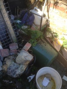 DIY Yard Clearance In Stanley